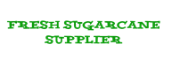 Fresh sugar cane supplier