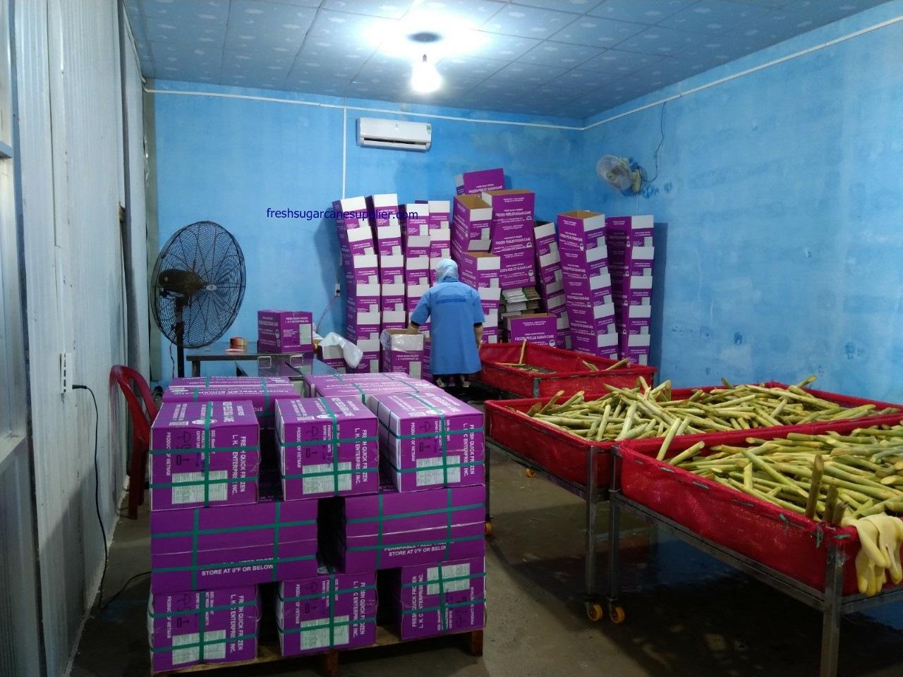 Packing sugarcane stalks